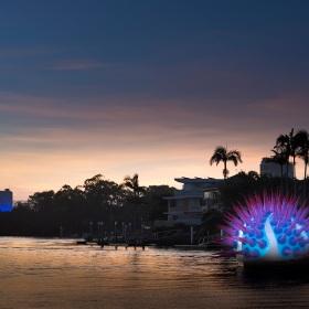 Urchin sunset - Surfers Paradise, Australia