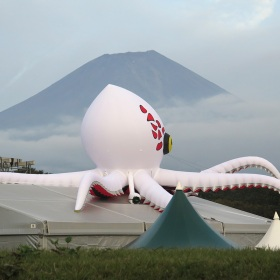 Octo in morning mist in front of Mt. Fuji